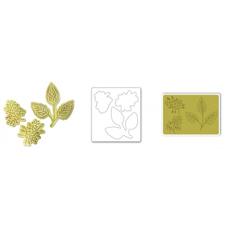 Bigz Die w/Bonus Textured Impressions - Botanical Leaves by Jen Long-Philipsen